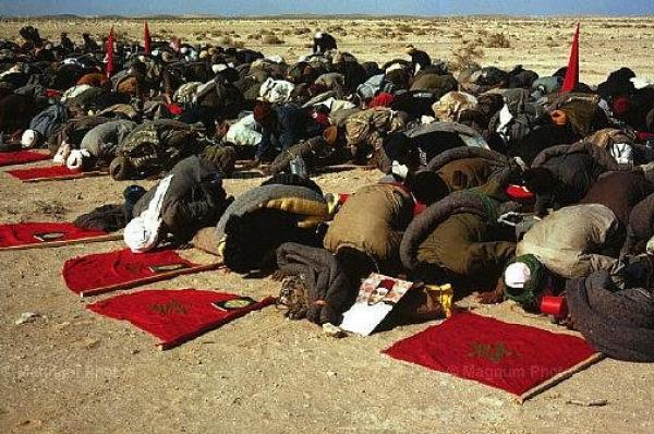 الصحراء الشرقية بين الاحتلال الجزائري وأحقية المغرب في استرجاعها