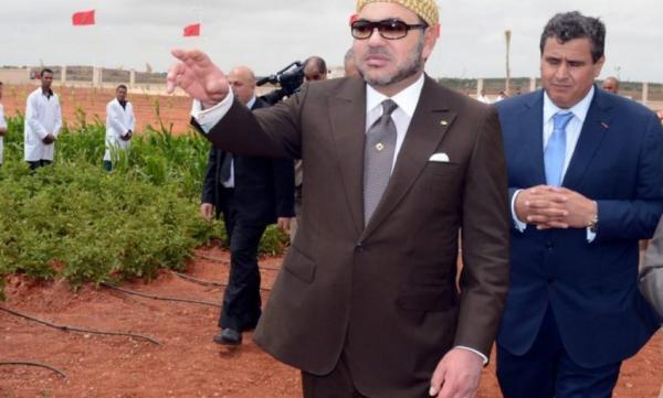 بتوجيهات ملكية...تفاصيل مخطط التنمية الفلاحية الجديد الذي يعول عليه المغرب لتشغيل 350 ألف شاب