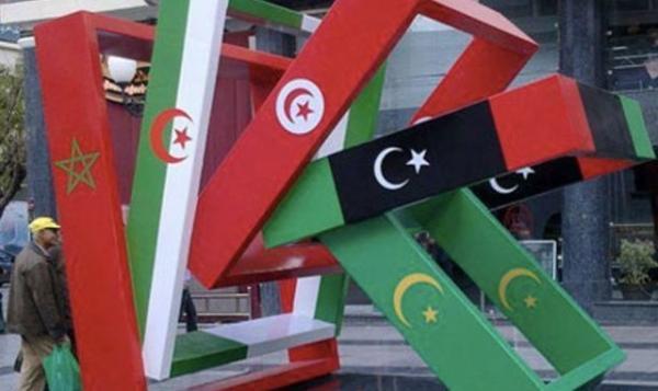 """خبير سياسي: جائحة """"كورونا"""" تزيد من إضعاف منطقة المغرب العربي"""
