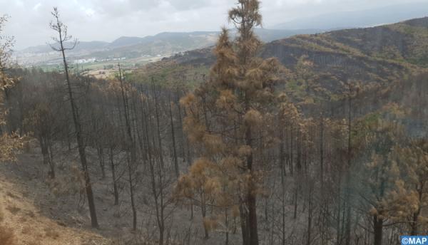 السيطرة شبه نهائيا على الحريق المندلع منذ 4 أيام ضواحي بالمضيق