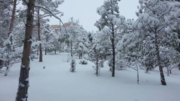 نشرة إنذارية من المستوى البرتقالي: طقس بارد (ناقص 10 درجات) وثلوج ورياح قوية بهذه المناطق