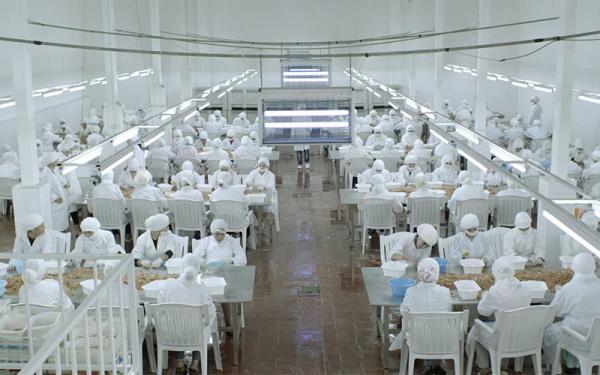 """بشرى خير.. الوالي """"مهيدية"""" يرخص لشركة هولندية بإنشاء معمل نواحي """"الفنيدق"""" يشغل المئات من النساء"""