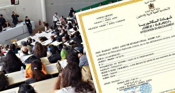 رسميا...4 سنوات للحصول على شهادة الإجازة وهذا هو موعد تطبيق النظام الجديد