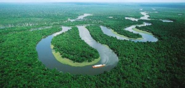 احتراق الأمازون...ما هي أهمية هذه الغابة العملاقة لسكان الأرض؟