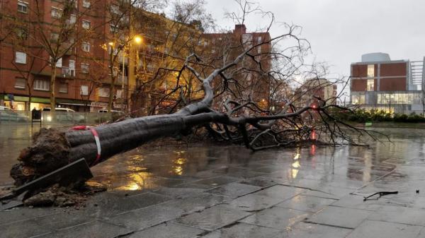 """عاصفة """"غلوريا"""" تواصل اجتياحها لإسبانيا متسببة في قطع الطرق وإغلاق المدارس"""