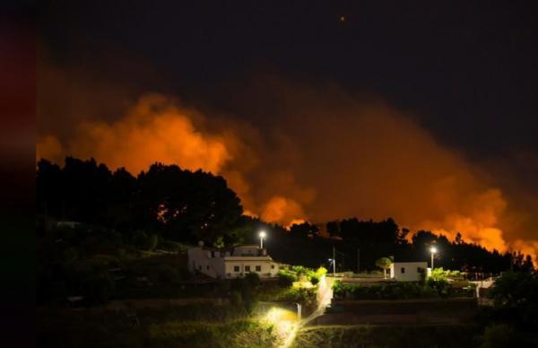 سلطات جزر الكناري تجلي أربعة آلاف شخص مع اتساع نطاق حرائق الغابات