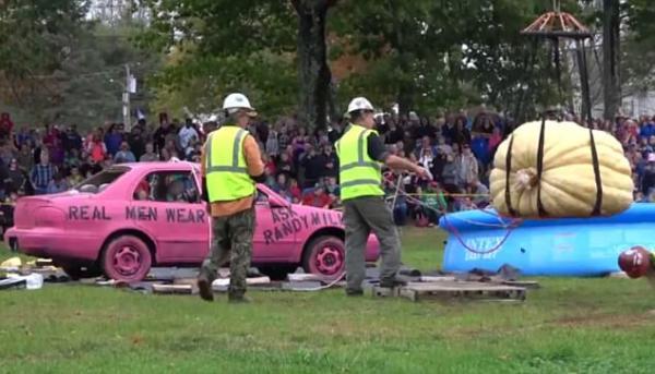 بالفيديو: محتفلون أمريكيون يحطمون السيارات بثمار يقطين ضخمة