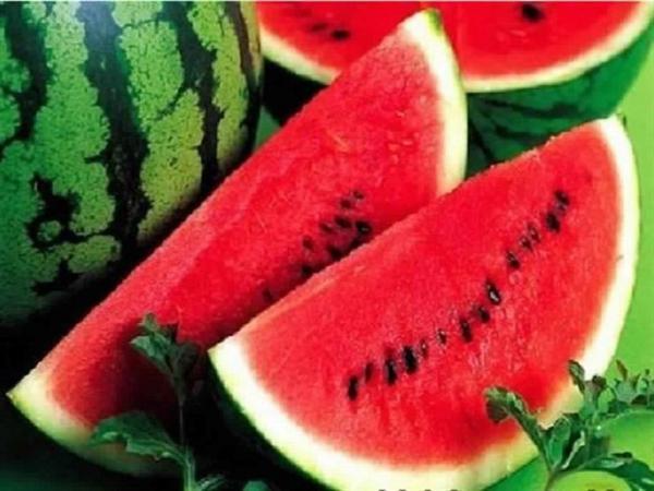 الأونسا تطمئن المغاربة: فاكهة البطيخ الأحمر سليمة وخالية من الملوثات(بلاغ)