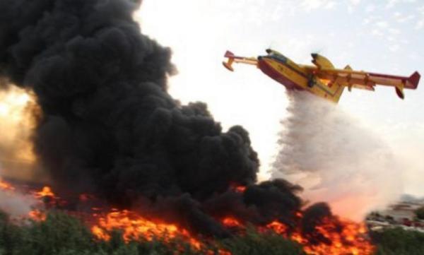 حريق مهول يلتهم غابة في الشريط الساحلي المضيق الفنيدق ويخلف خسائر فادحة