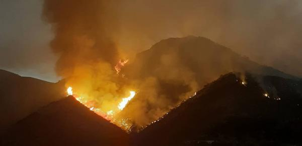 """""""أخبارنا"""" تروي تفاصيل مثيرة حول الحريق المهول الذي التهم مئات الهكتارات نواحي الدريوش"""