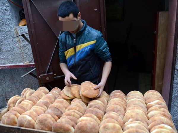 الداودي : المغاربة يستهلكون دقيقا فاسدا بسبب جشع بعض أرباب المطاحن