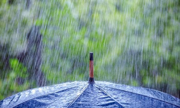 استمرار الطقس البارد وعودة الزخات المطرية الرعدية ابتداء من اليوم بعدد من المناطق