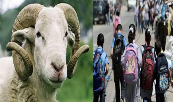 العطلة الصيفية، عيد الأضحى والدخول المدرسي .. نفقات تثقل كاهل الأسر متوسطة الدخل
