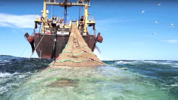 منع الصيد بالجر .. قانون حكومي جديد لحماية الثروة السمكية بالمغرب