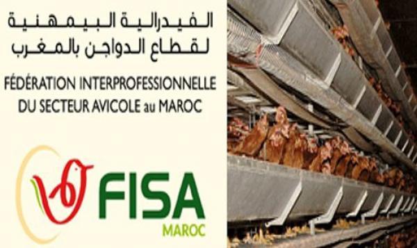 """الفيدرالية البيمهنية لقطاع الدواجن بالمغرب تكشف عن موعد تنظيم معرض """"دواجن 2019"""""""