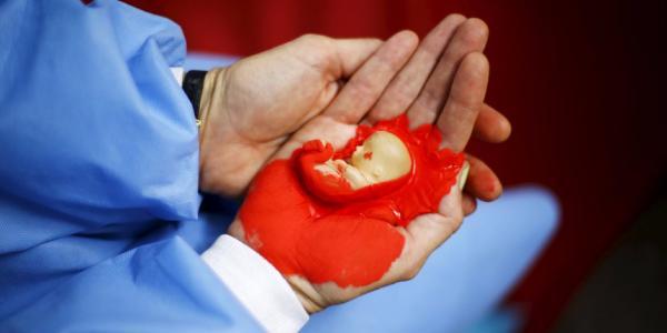 تقنين الإجهاض...النواب يدخلون آخر التعديلات على القانون الجنائي وهذا البرنامج الكامل لاجتماعات اللجان الدائمة