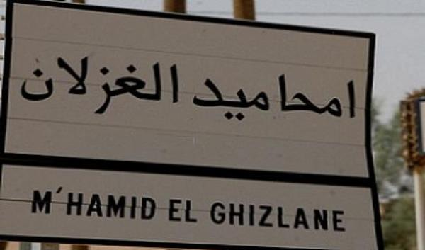 رحل محاميد الغزلان يستنكرون تعرض قطعان إبلهم للإبادة
