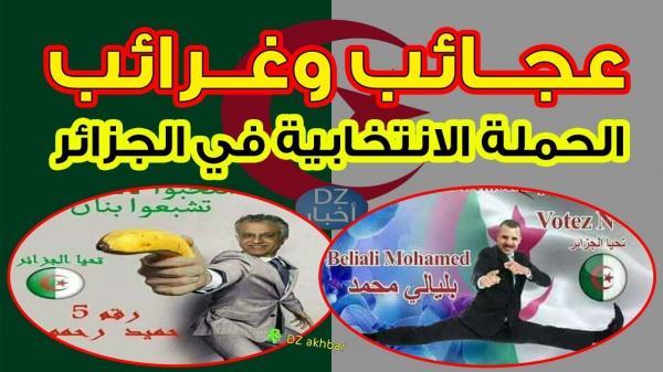 الحملة الانتخابية بالجزائر.. موجة سخرية من ملصقات المرشحين