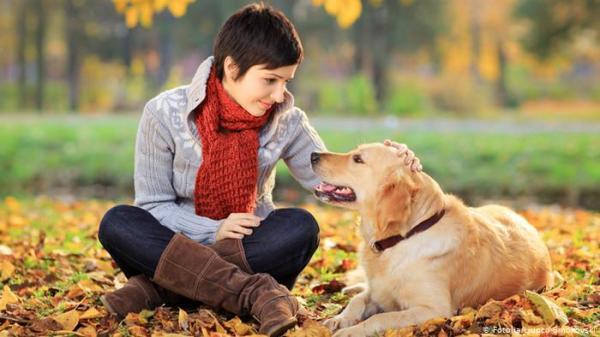 هل تساعد الكلاب فعلا على تقليل خطر وفاة أصحابها مبكرا؟