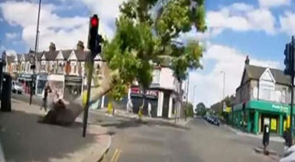 بسبب الرياح القوية.. شجرة عملاقة كادت تودي بحياة سيدتين(فيديو)
