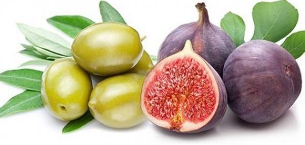 تعرف على أسماء نباتات ذكرت في القرآن