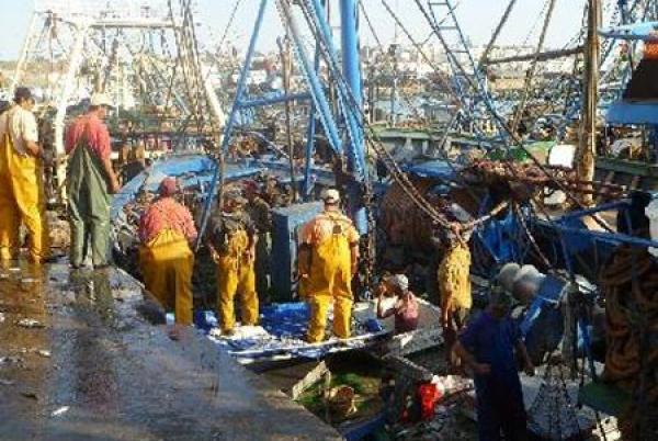 اسبانيا تضغط على اللجنة الأوروبية لتوقيع اتفاقية جديدة للصيد البحري مع المغرب