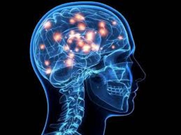 دراسة: إصابة الإنسان بالجفاف تغير شكل ونشاط الدماغ