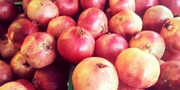 رمان أولاد عبد الله: فاكهة فريدة في حاجة للتثمين