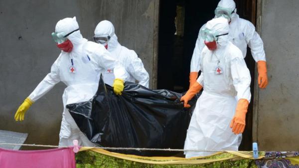 أطباء شرعيون: صرامة كبيرة في التعامل مع جثت ضحايا كورونا