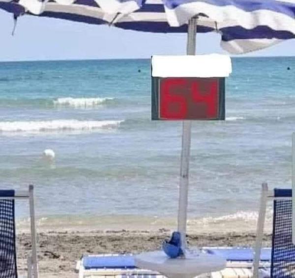 صيف 2020: مول نمرة 64 ينوض يعوم