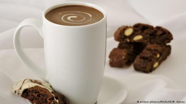 دراسة: الكاكاو يساعد مرضى التصلب المتعدد في التغلب على الإرهاق