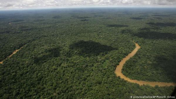 بعد 34 يوماً..إنقاذ امرأة وأطفالها في غابات الأمازون