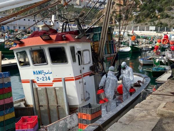 """خلو ركاب مراكب الصيد الساحلي التي حلت بميناء الحسيمـة من أعراض فيروس """"كورونا"""" (صور)"""
