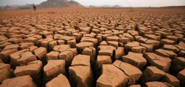 """فلاحون باقليم الفقيه بن صالح يشتكون من جفاف أراضيهم و يراسلون """"أخنوش"""" ويطالبونه بالتدخل"""