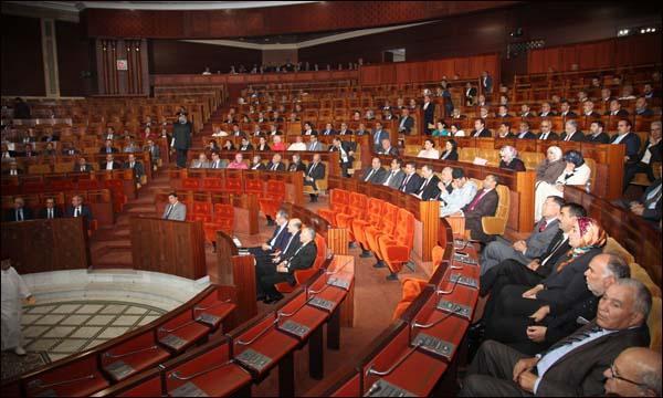 """مجلس النواب.. رفض مطلق لما تضمنه التقرير الأخير لمنظمة """"أمنستي"""""""