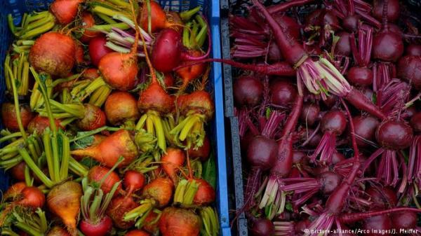 ما لا تعرفه عن فوائد الشمندر الأحمر الغذائية والصحية