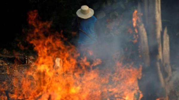 الأمازون..رئة الأرض تحترق
