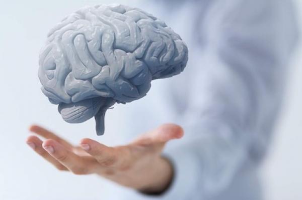 قوة العضلات مؤشر على الأداء الأفضل لوظائف الدماغ