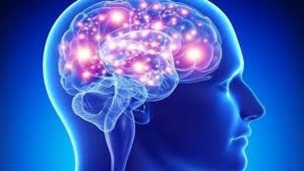 اكتشاف خلية جديدة بالمخ تميز الإنسان عن باقي الكائنات