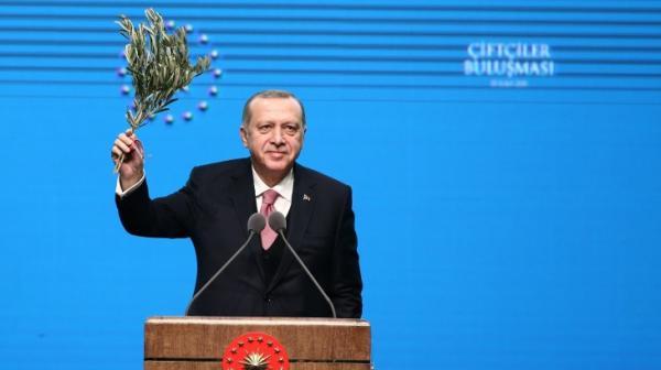 """تركيا تدخل موسوعة """"غينيس"""" بغرس 303 آلاف و150 شتلة خلال ساعة واحدة"""
