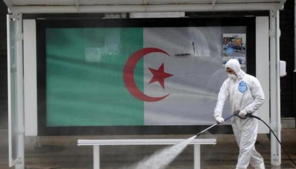 الجزائر تعلق جميع أنشطة الجامعات إلى نهاية السنة