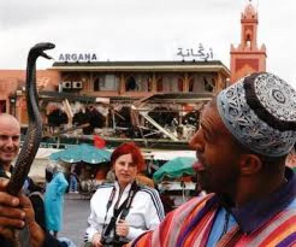 مراكش : وفاة شخص بساحة جامع الفنا بسبب لدغة أفعى