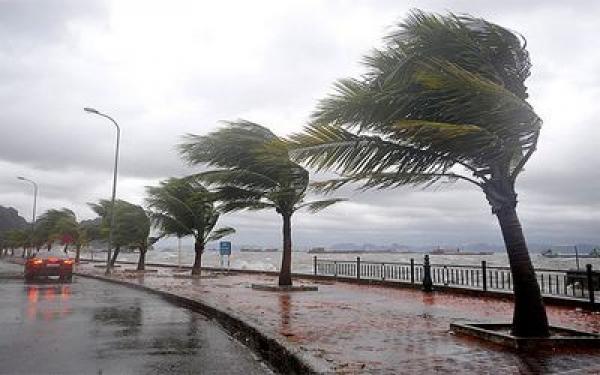 المدن المغربية التي شهدت أعلى مقاييس التساقطات المطرية خلال الـ24 ساعة الماضية