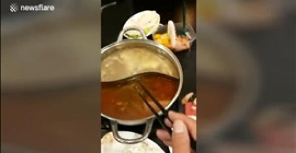 عثور امرأة على فأر في حسائها داخل مطعم (فيديو)