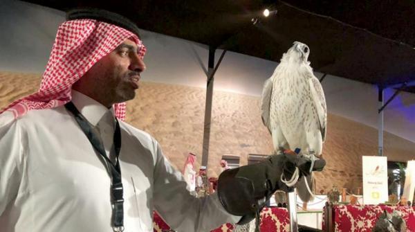 بالفيديو... بيع صقر في السعودية بسعر خرافي