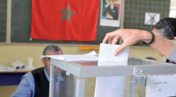جهة رسمية تضغط للعودة إلى الإنتخابات الفردية وصراع كبير في الكواليس حول نمط الاقتراع