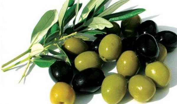 7 فوائد صحية تدفعنا للتناول الزيتون