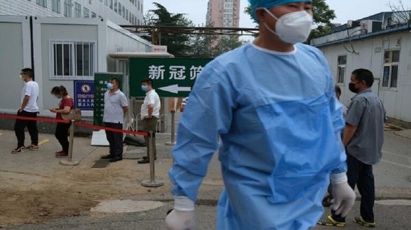الصين تعلن مستوى الخطر الثالث لتفشي مرض الطاعون الدملي!