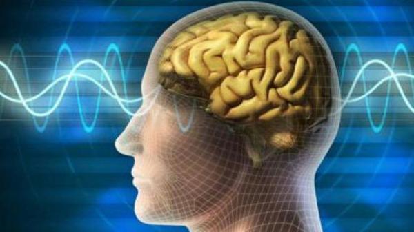 بهذه الطريقة تحافظ على صحة وحيوية دماغك