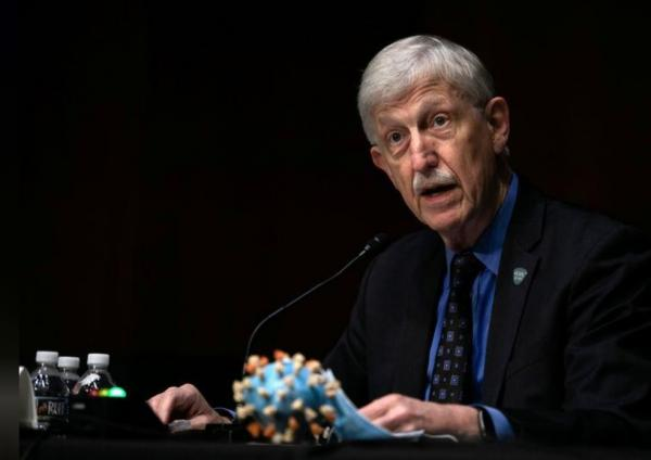 مدير المعاهد الوطنية الأمريكية متفائل إزاء إنتاج لقاح لكوفيد-19 بنهاية العام